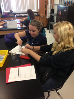 Palm Pointe students use iconic item to study chemical change to matter