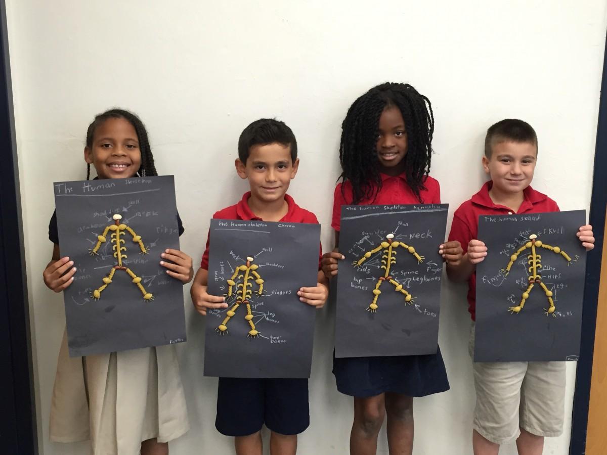 F K Sweet Second Graders Model Skeletons