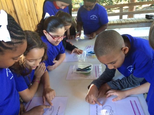 Savanna Ridge Third Graders Learn about Plants at Heathcote Botanical Gardens!