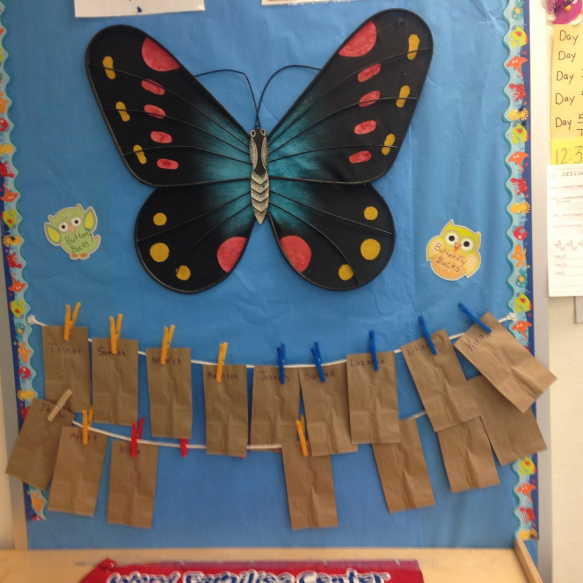 PBIS Mariposa Butterfly Bucks Rock!