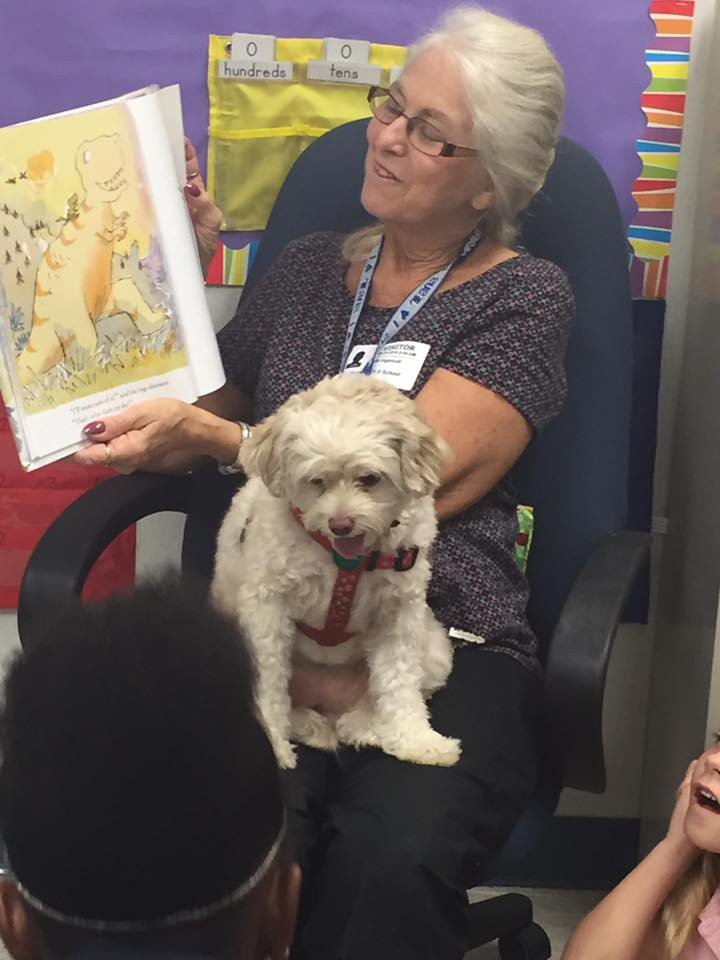 Bright and Beautiful Reading Therapy Dogs Thrill @ Northport!